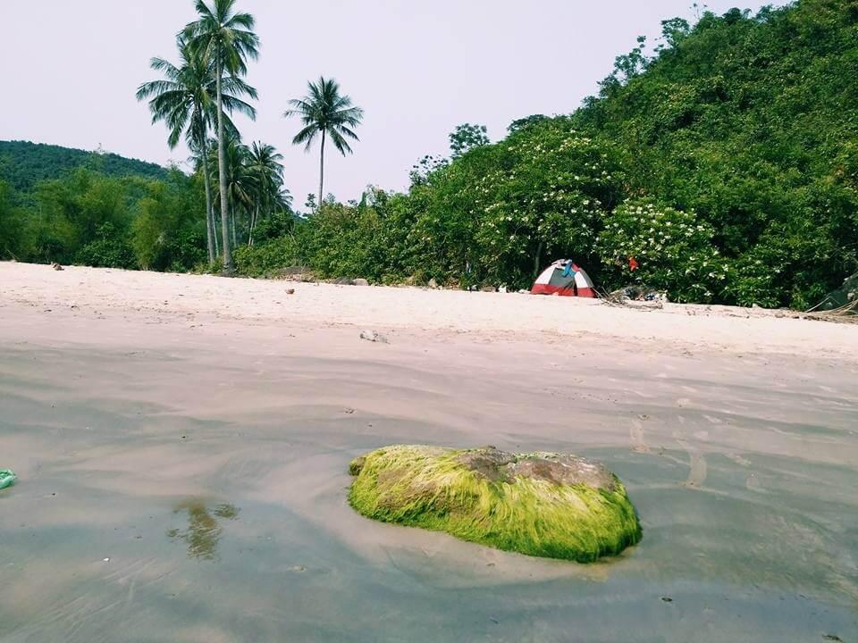 Bãi Dừa tại Làng Vân