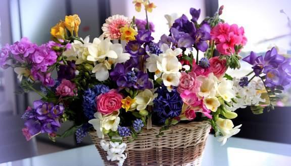 Điện hoa Đạm Nhã 3 - Shop bán hoa tươi tại Đà Nẵng