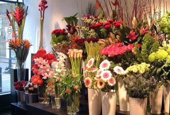 Cửa Hàng Hoa Tươi Thủy Tiên - Shop hoa tươi ở Đà Nẵng