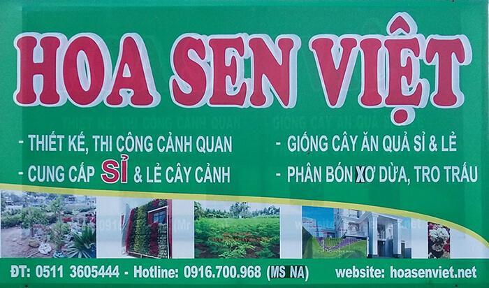 Shop Cây Cảnh Tại Đà Nẵng