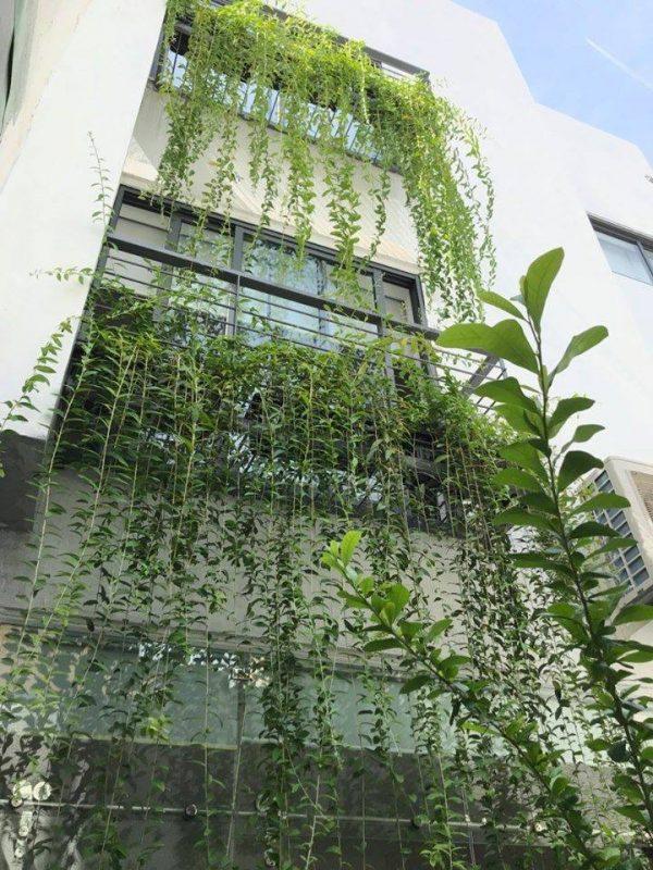 Một công trình cây xanh tại CMT Garden Đà Nẵng