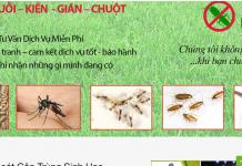 dịch vụ phun muỗi sài gòn