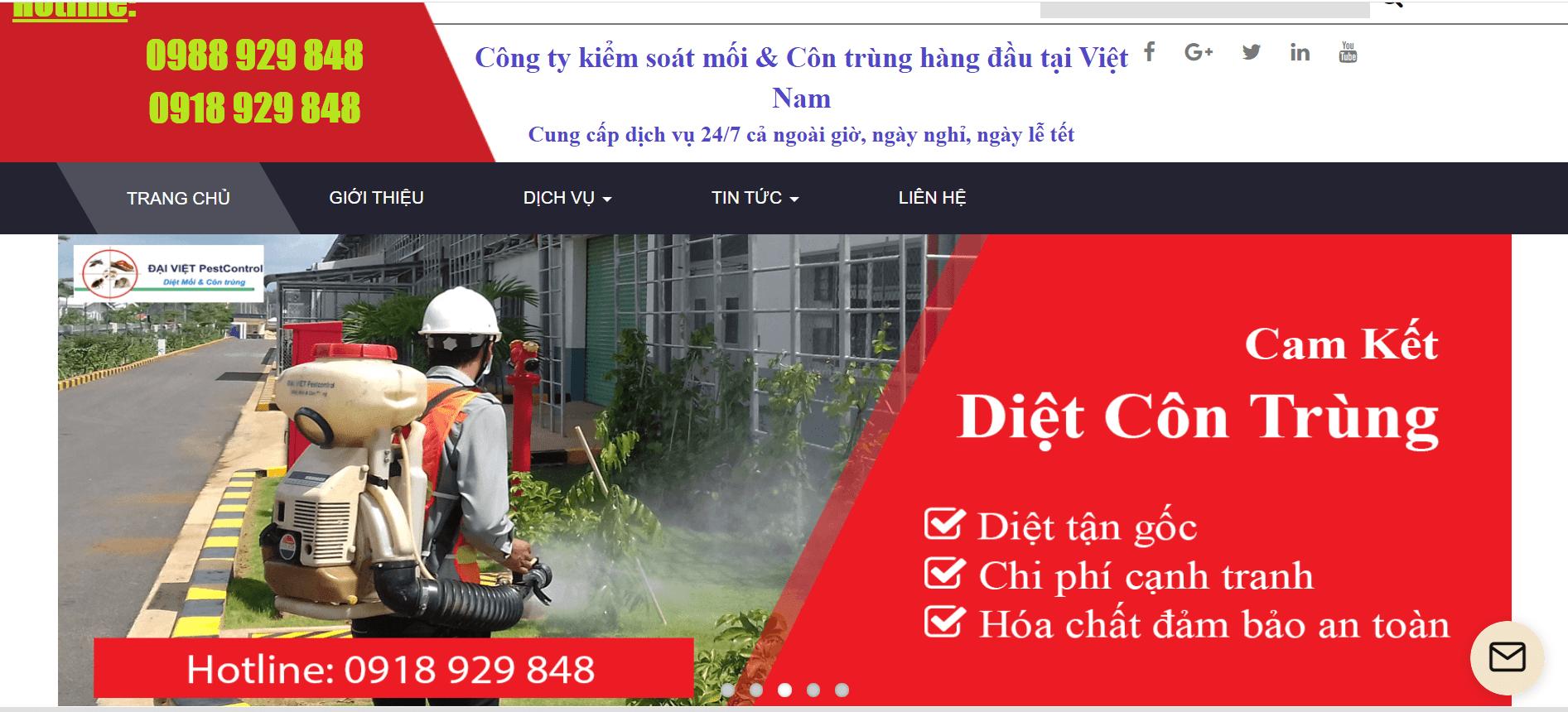Dịch vụ diệt côn trùng và chuột Hà Nội