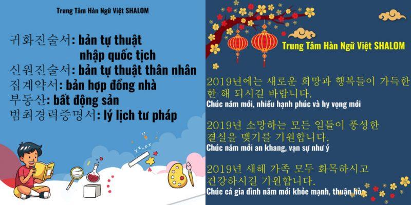 Trung Tâm Hàn Ngữ VIỆT SHALOM